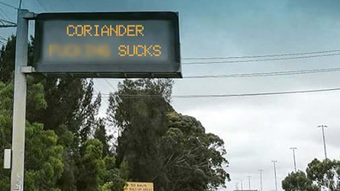 "Anti Coriander Movement Fools The Internet With A Digital Street Sign ""Hack"""