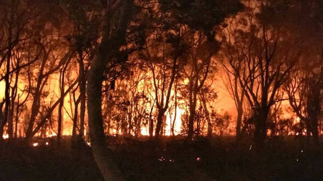 Here's What You Can Do To Prepare For Potential Gold Coast Fires