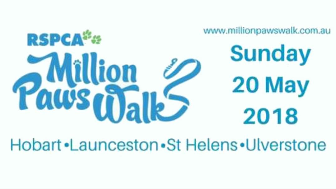Million Paws Walk in Hobart This Sunday