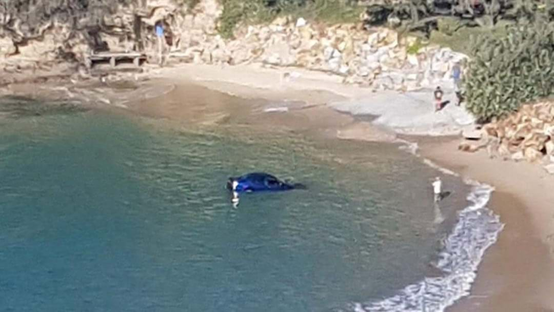 Car Submerged in Water at Nambucca Heads