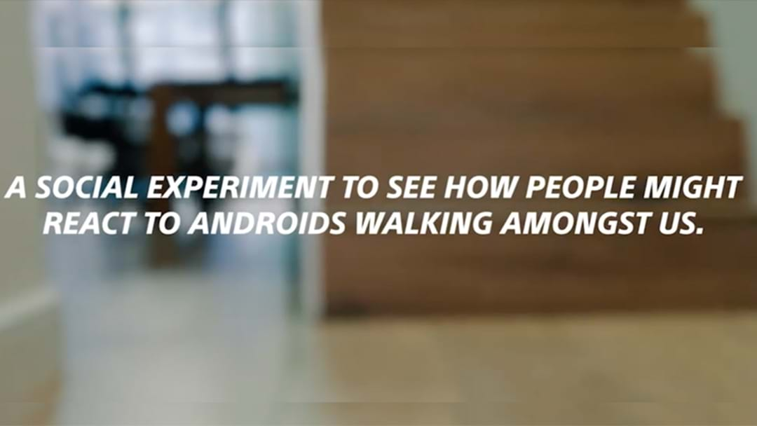 Bizarre Social Experiment With Androids In Sydney