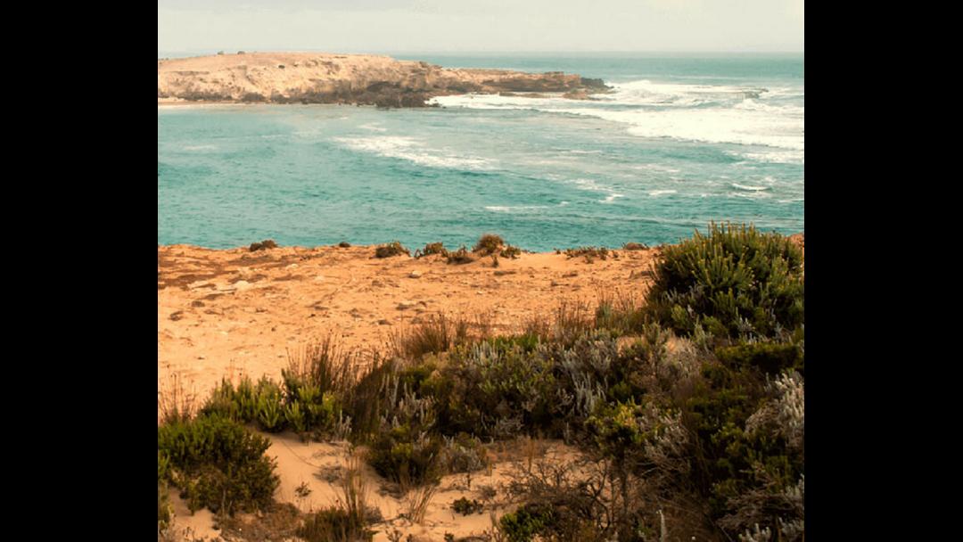 Wattle Range council seek iconic images