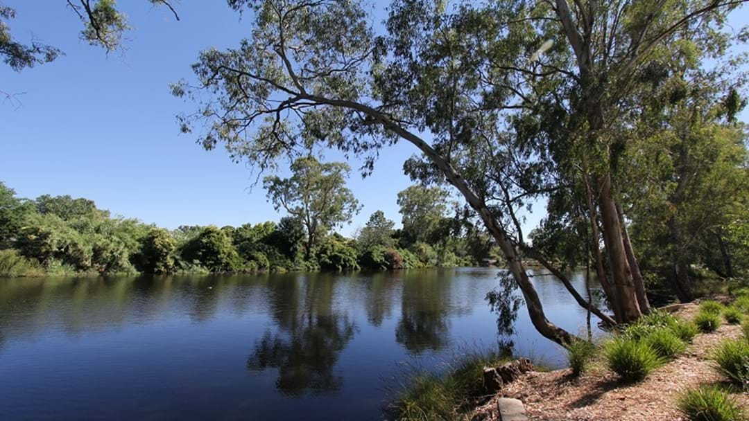 Murray-Darling Compliance Under the Microscope