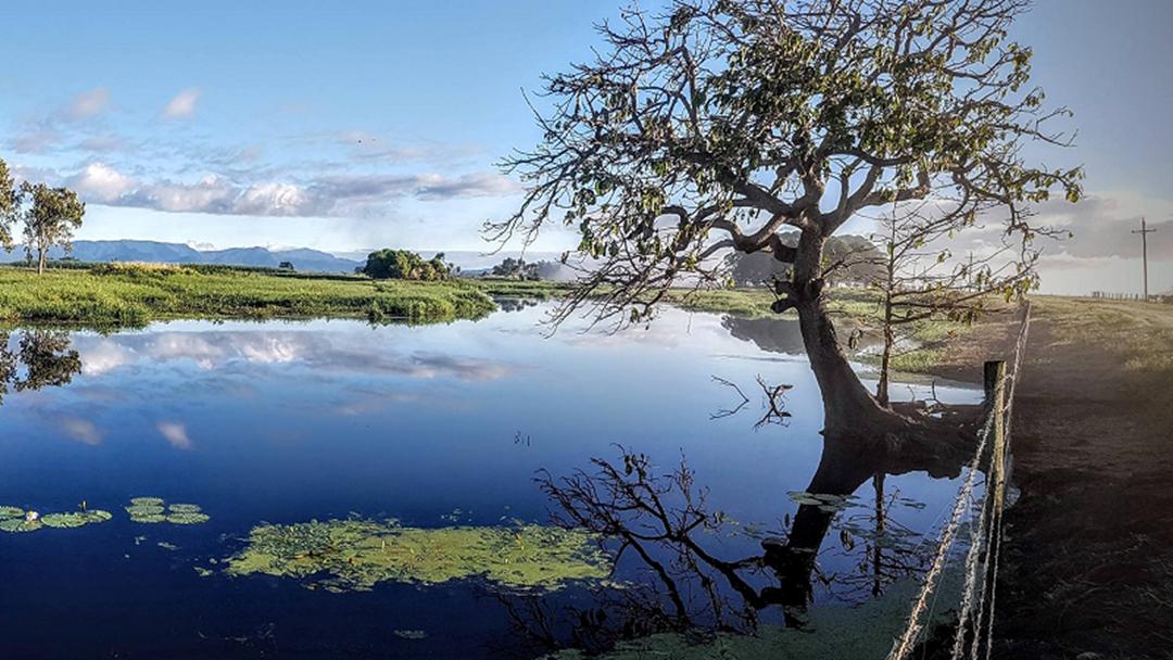 North Queensland's Mungalla Wetlands Earn National Award