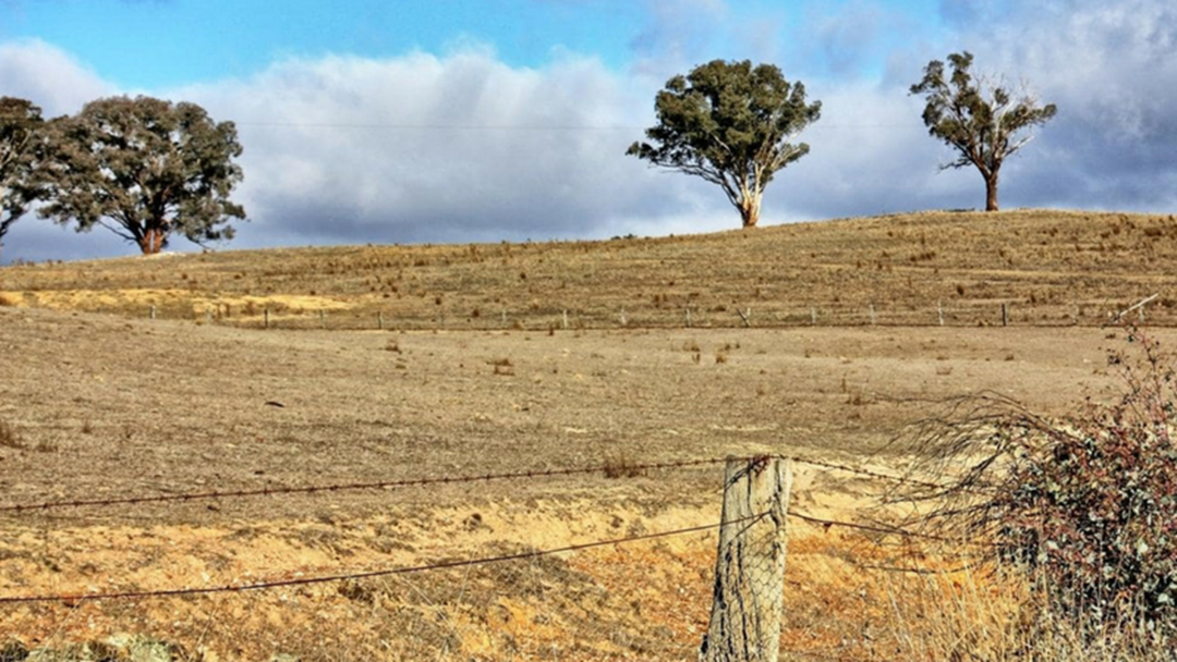 $500 Million Spent To Support Farmers Through Drought
