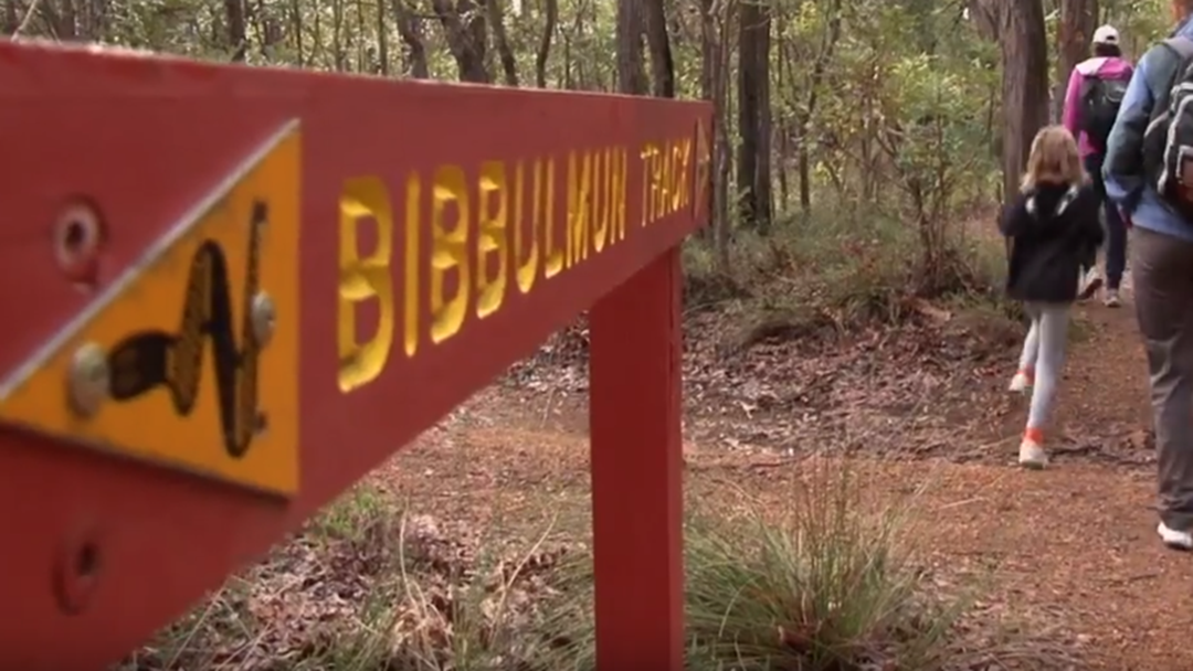 Bushwalkers Allegedly Run Down, Attacked With Shovel