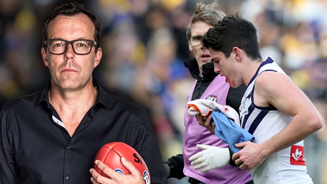 "LISTEN | Damian Barrett Says The AFL Is ""Partly To Blame"" For Gaff's Punch"