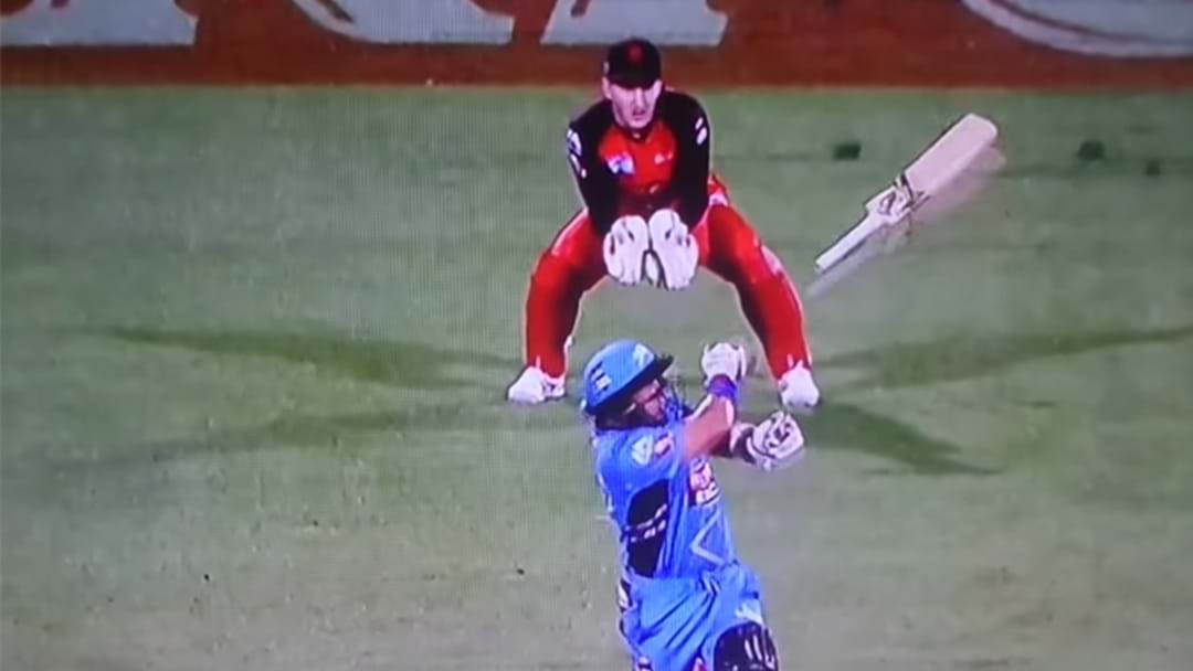 BBL Wicketkeeper Hit In Face With Cricket Bat