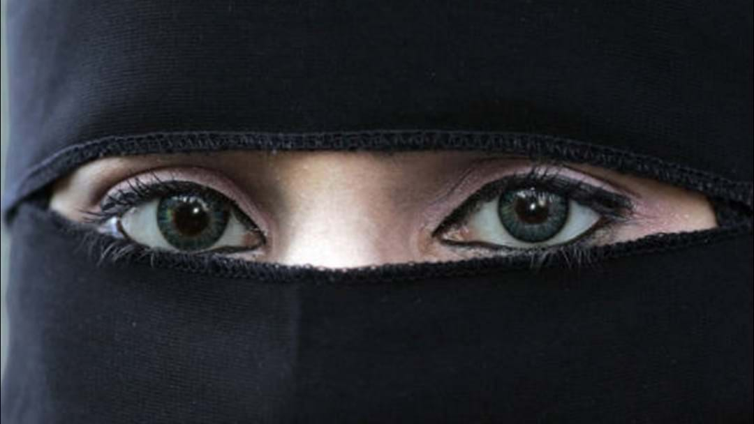 Pauline Hanson Says She Will Ban The Burqa In Queensland