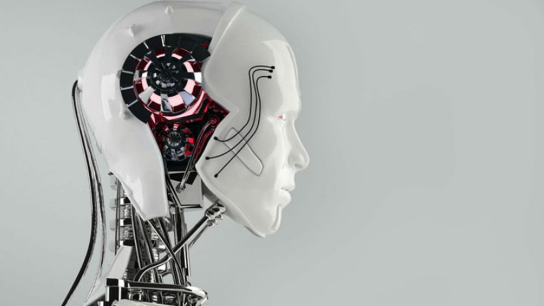 The Top 10 Jobs At Risk Of Being Replaced With Robots