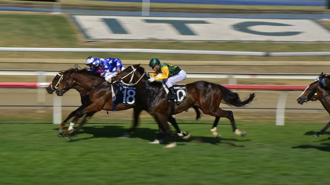 "Aussie Race Horse Owner Cops A Ban For Calling His Filly ""Let's Go C--t"""