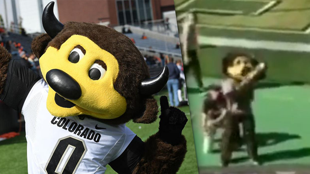 US Mascot Annihilates Own Dick By Accidentally Shooting Himself With T-Shirt Gun