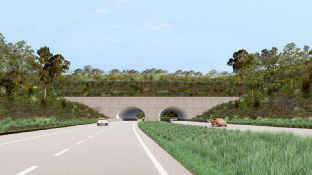 State Labor Candidate Wouldn't Commit to Tunnels
