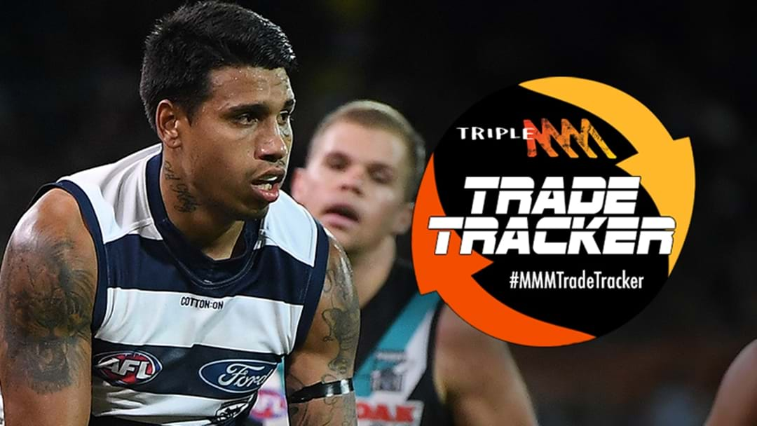 Geelong Release Statement On Tim Kelly
