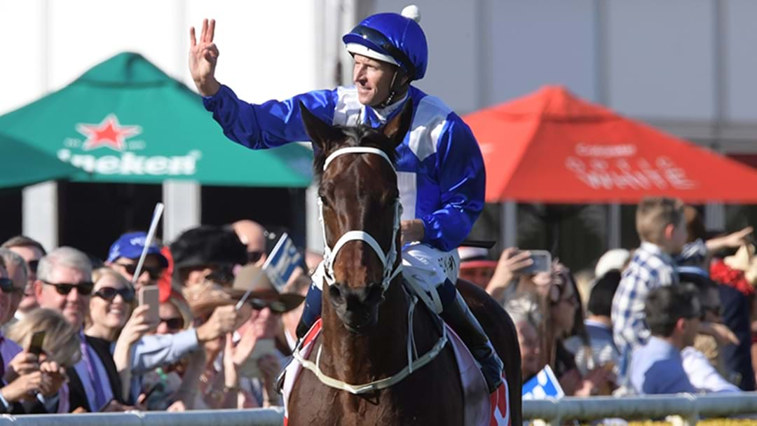 Some Madman Has Just Dumped $170,000 On Winx To Win The Turnbull Stakes