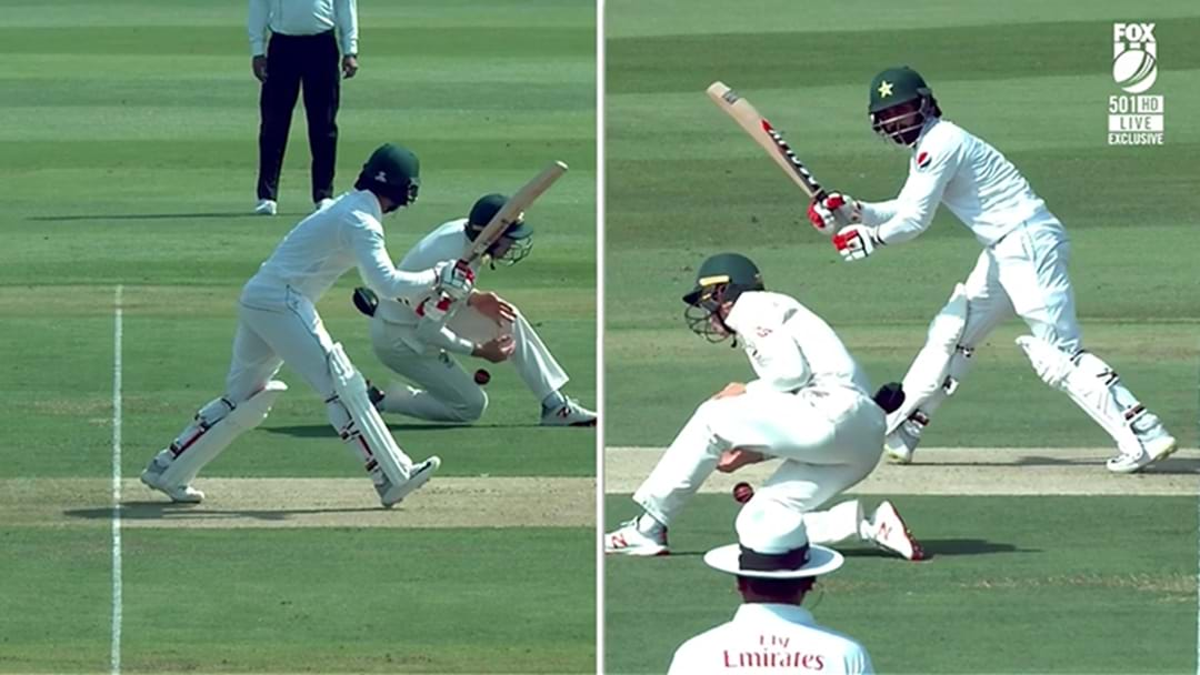 Marnus Labuschagne Just Took One Of The Most Ridiculous Short Leg Catches You'll See