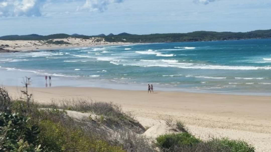 Whale Carcass Closes Beaches In Port Stephens