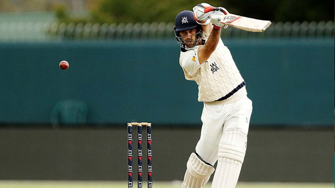 Melbourne Stars Coach Stephen Fleming Says Glenn Maxwell Is Frustrated By A Lack Of Opportunity