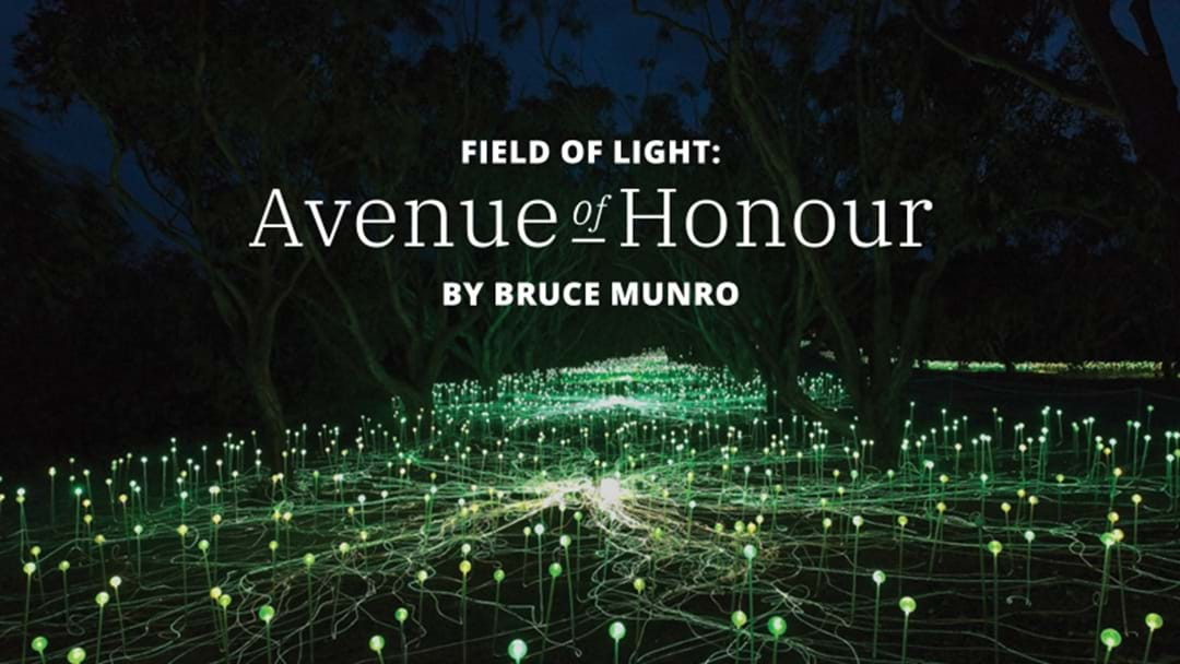 Win a Family Trip to the Field of Light in Albany