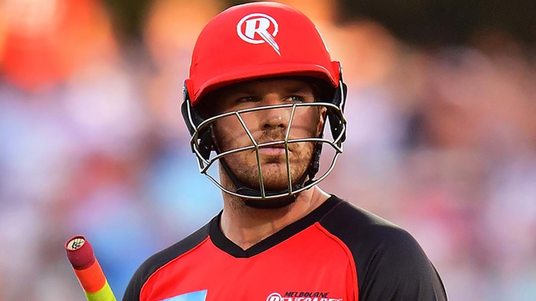 Melbourne Renegades Cop Massive Fine After Gabba Win