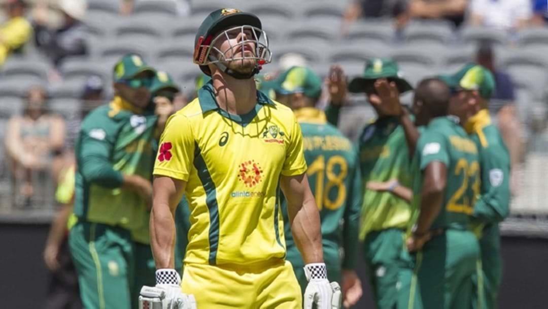 Australian Cricket - wading through it's darkest period in recent history