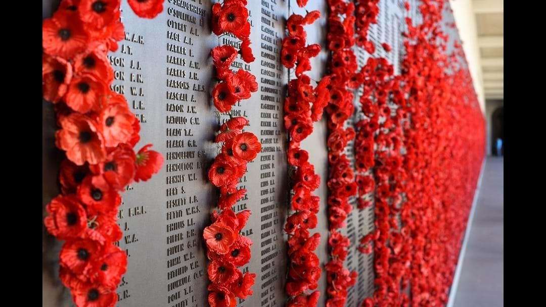 Albany set to Host Remembrance Day Commemorations