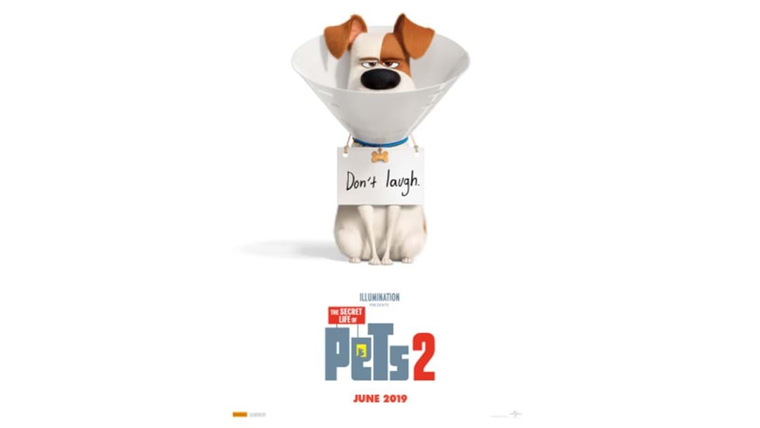 First Look At Secret Life Of Pets Sequel