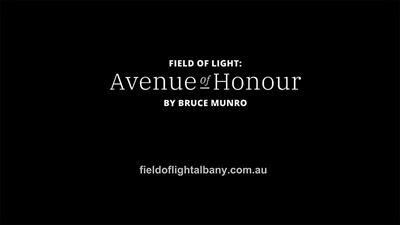 Albany's Field Of Light
