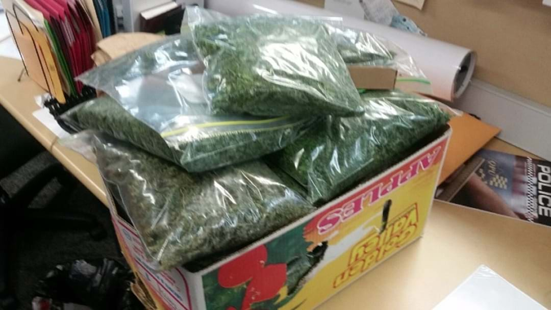 Police Seize $100,000 Worth Of Drugs Headed For Gold Coast Schoolies