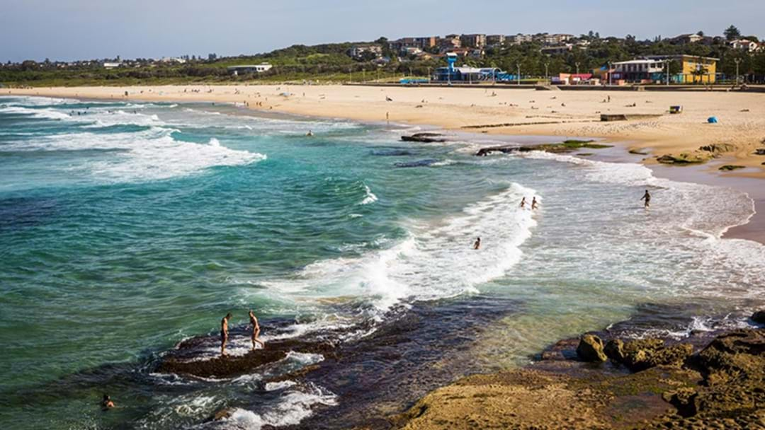 Maroubra Beach Was Closed For A Short Time After Shark Sighting