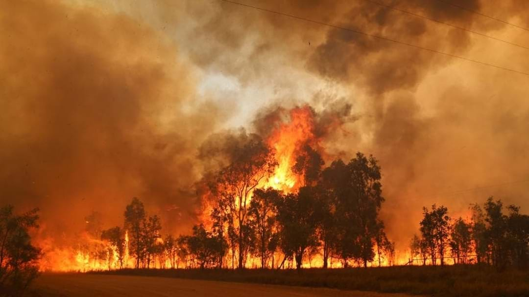 Central Coast RFS Sent To QLD To Fight Monster Fires