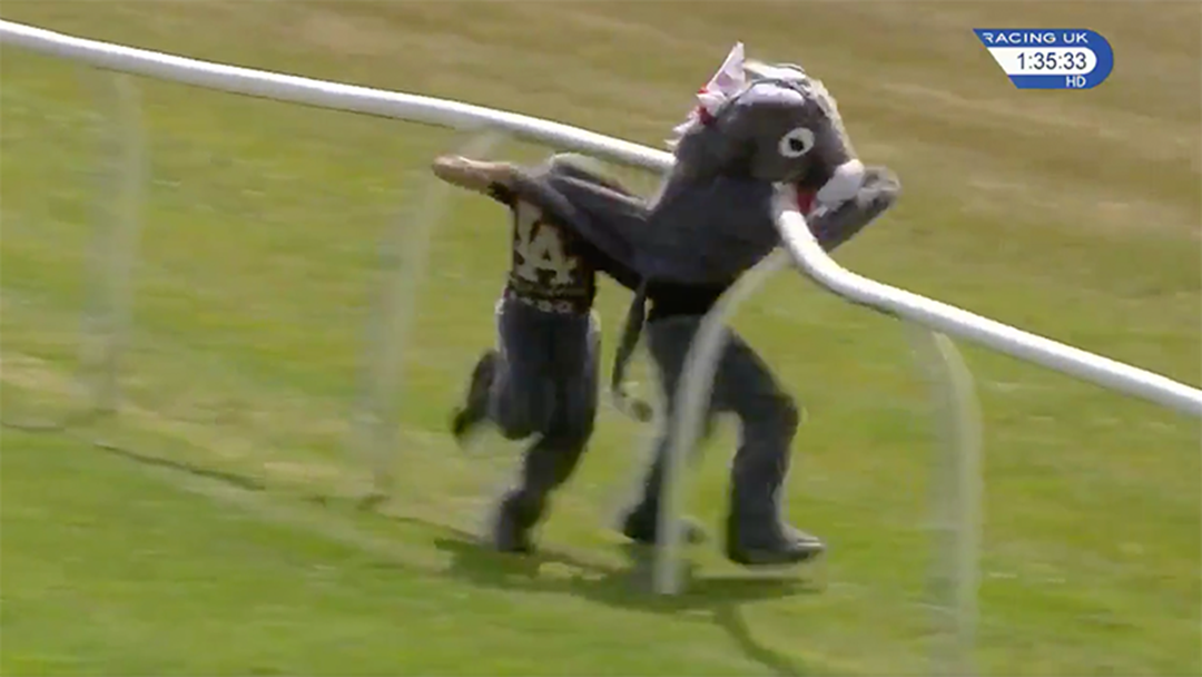 Watch Two Blokes In A Donkey Costume Obliterate Themselves During A Charity Running Race