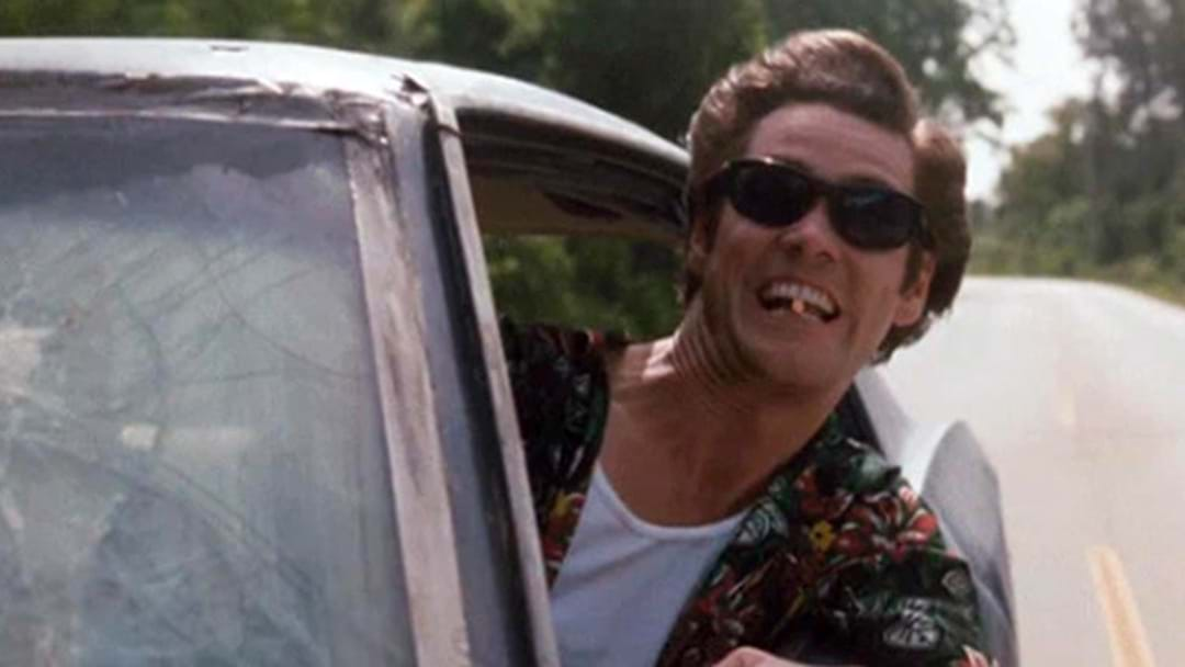 Man Slams Car Into Tree After Trying To Drive With His Head Out The Window Like 'Ace Ventura'