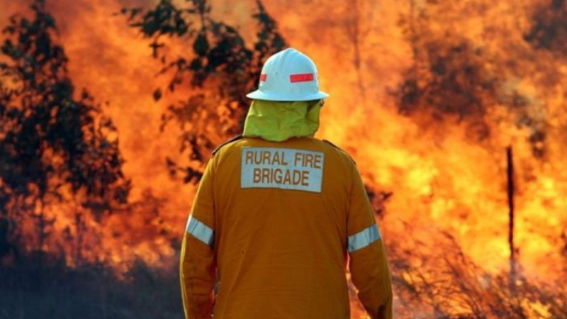 Article heading image for Cr Tony Williams Thanks Emergency Services For Quick Response