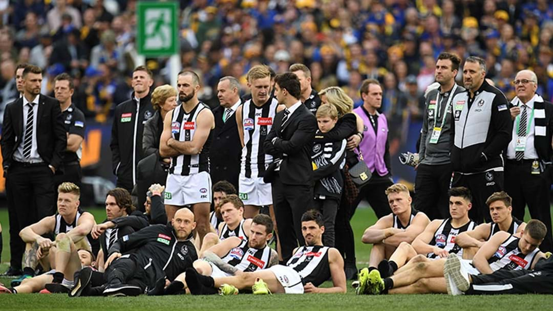 Tom Browne Says Collingwood Are Reviewing Their Grand Final Performance Today