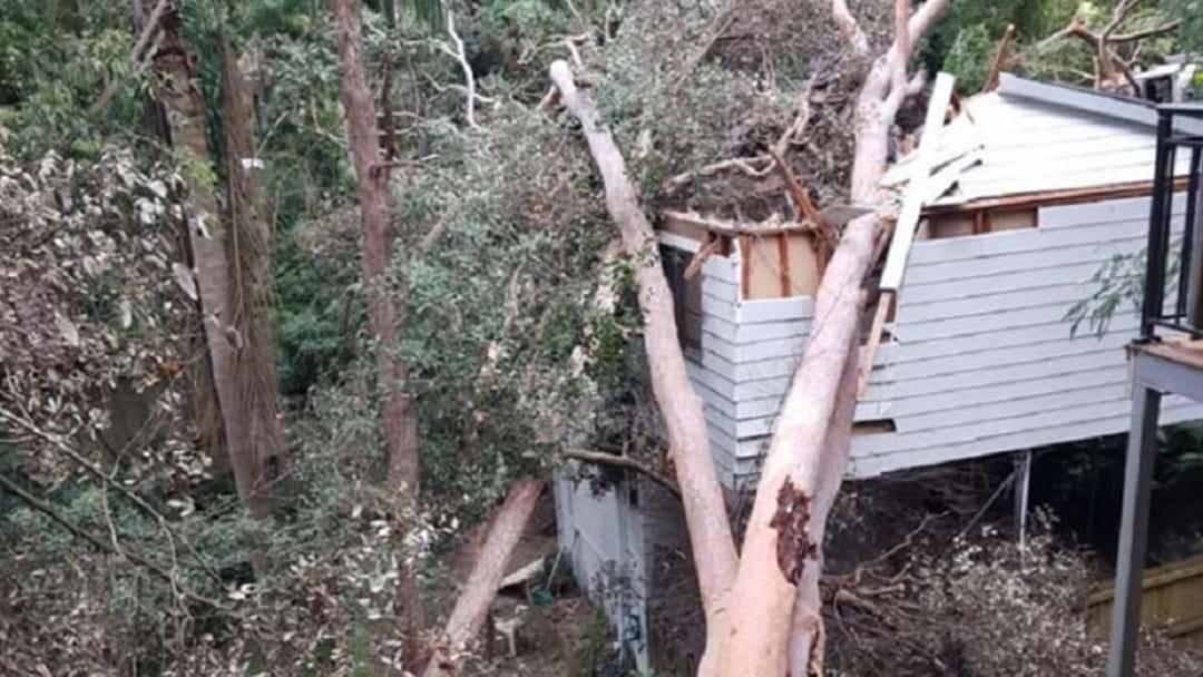 A Tree Fell Through A House In North Gosford Last Night