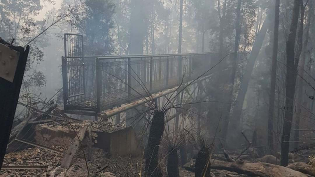 Tahune Airwalk Visitor's Centre SAVED from ember attack overnight