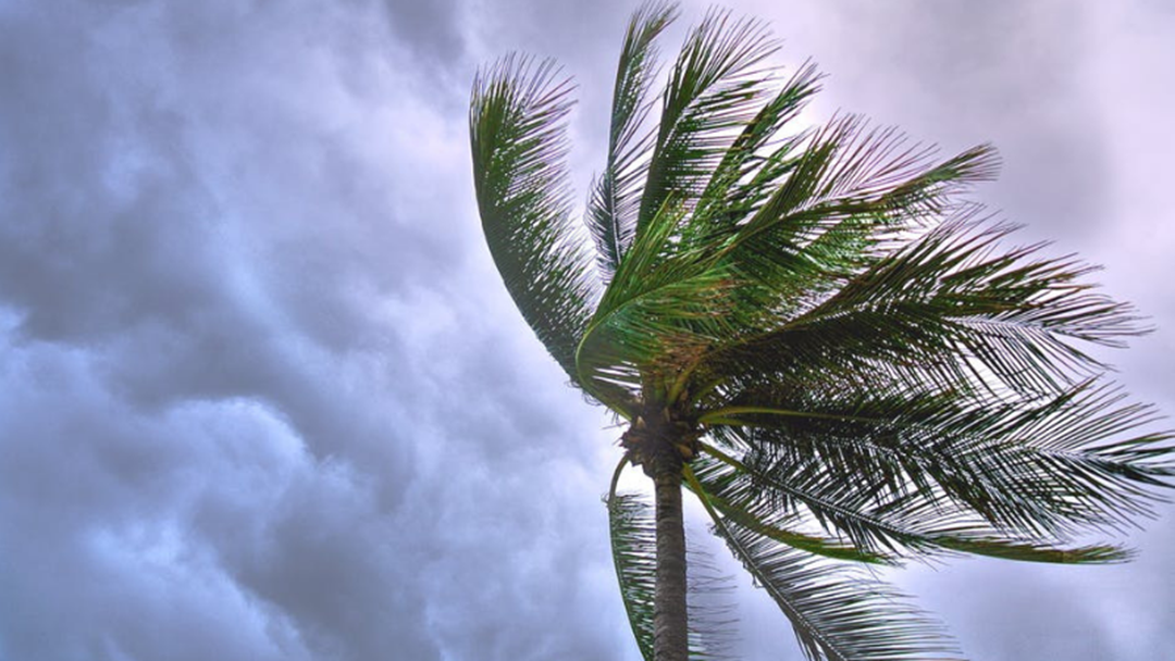 How To Stay Safe During Storm Season On The Gold Coast