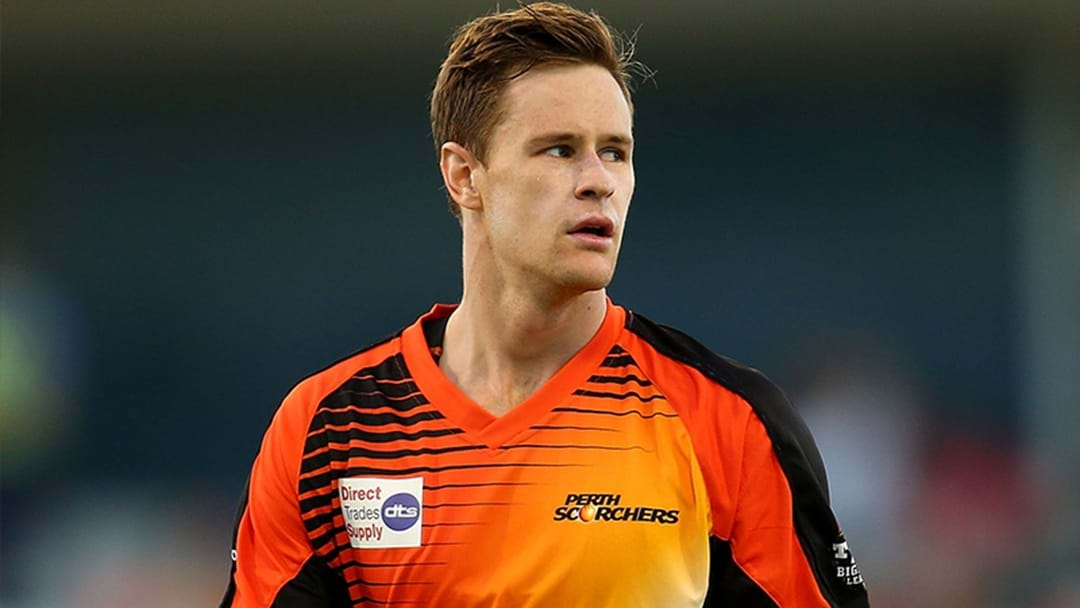 Scorchers Star To Make Shock BBL Final Appearance
