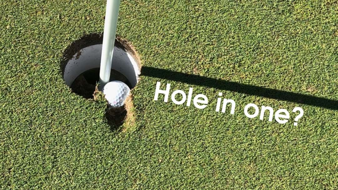 Eyes Alive Golfers... Is This A Hole In One?