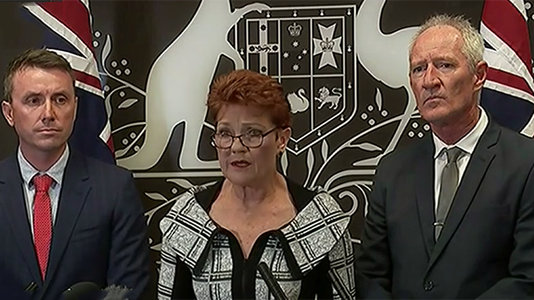 Pauline Hanson Says Footage Of One Nation Meeting With NRA Was 'Edited'