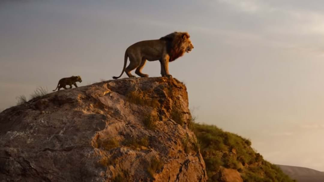 The New Lion King Movie Trailer Is Here So Hakuna Matata