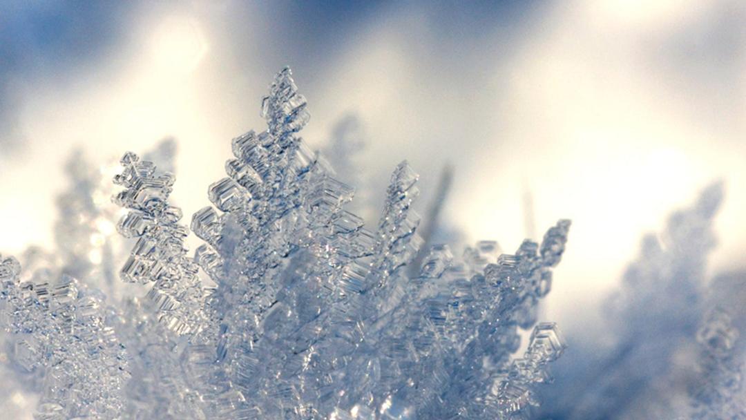 Dreamworld To Transform Into Winter Wonderland