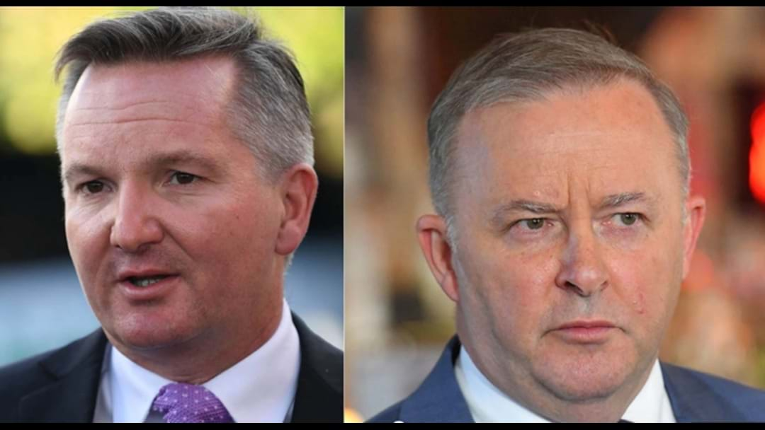 Chris Bowen Pulls Out Of Leadership Race, Albo Likely Labor Leader