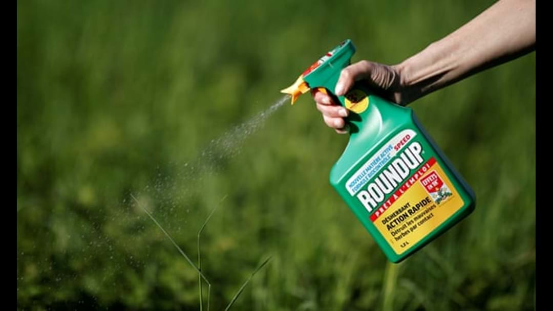 Melbourne Gardener Launched Legal Action Against Makers Of Round Up