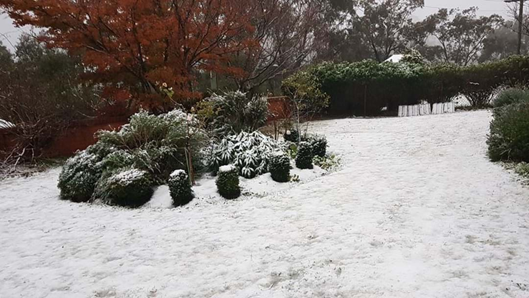 Snow Blankets The Blue Mountains As Sydney Set For Wild Winds