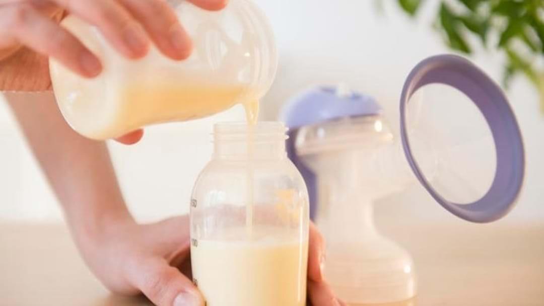 Bridge Explains Adult Breast Feeding!