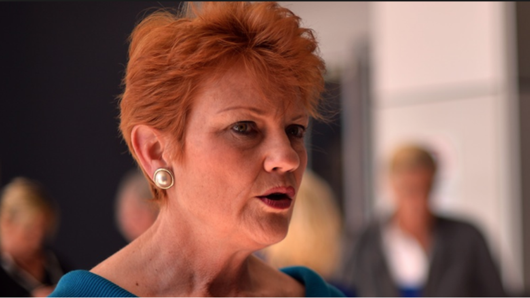 Pauline Hanson Has Been Banned From Twitter