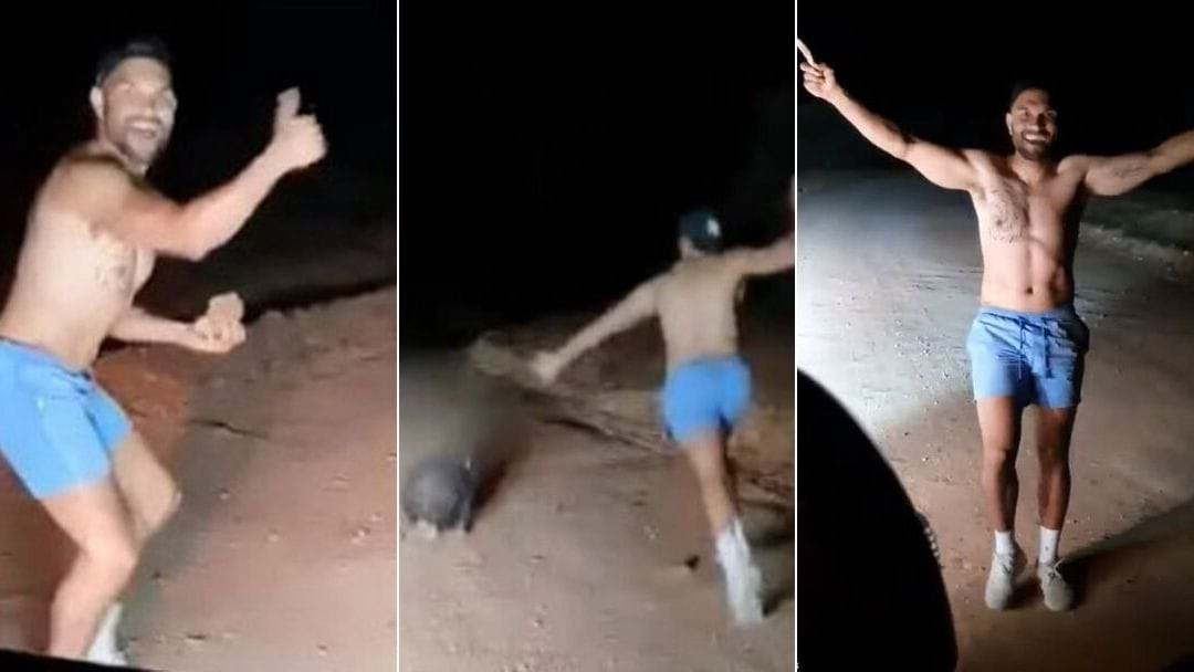 Off-Duty Cop Filmed Stoning Wombat To Death In South Australia