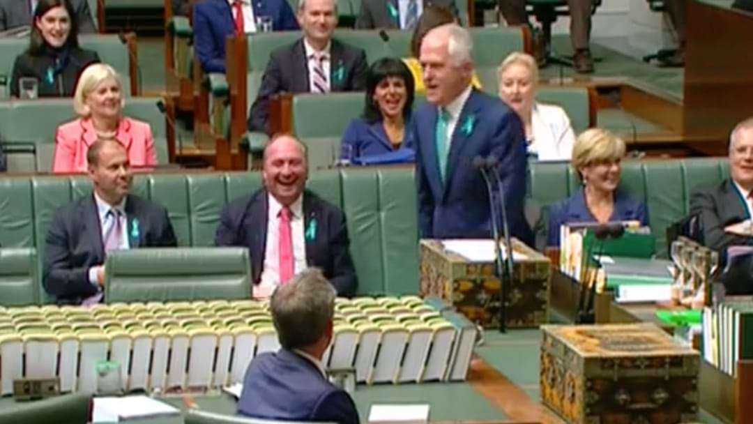Malcolm Turnbull Ripped Bill Shorten A New One In Parliament This Arvo